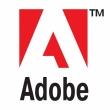Скачать новый adobe flash player 13